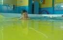 Photos des bébés nageurs séance du 21 mai